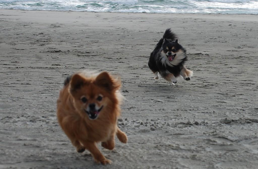 Å løpe på stranda, på fjellet eller tur i skogen er også god trening!