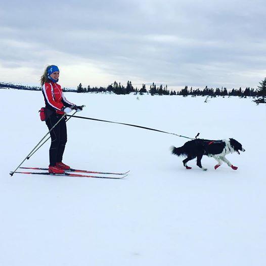Jess i fint driv på skitur på Sjusjøen i påsken.