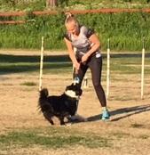 God trening å komme på andre steder. Jess brydde seg ikke om forstyrrelsene.