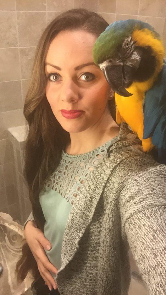 Papegøye nyttårsaften