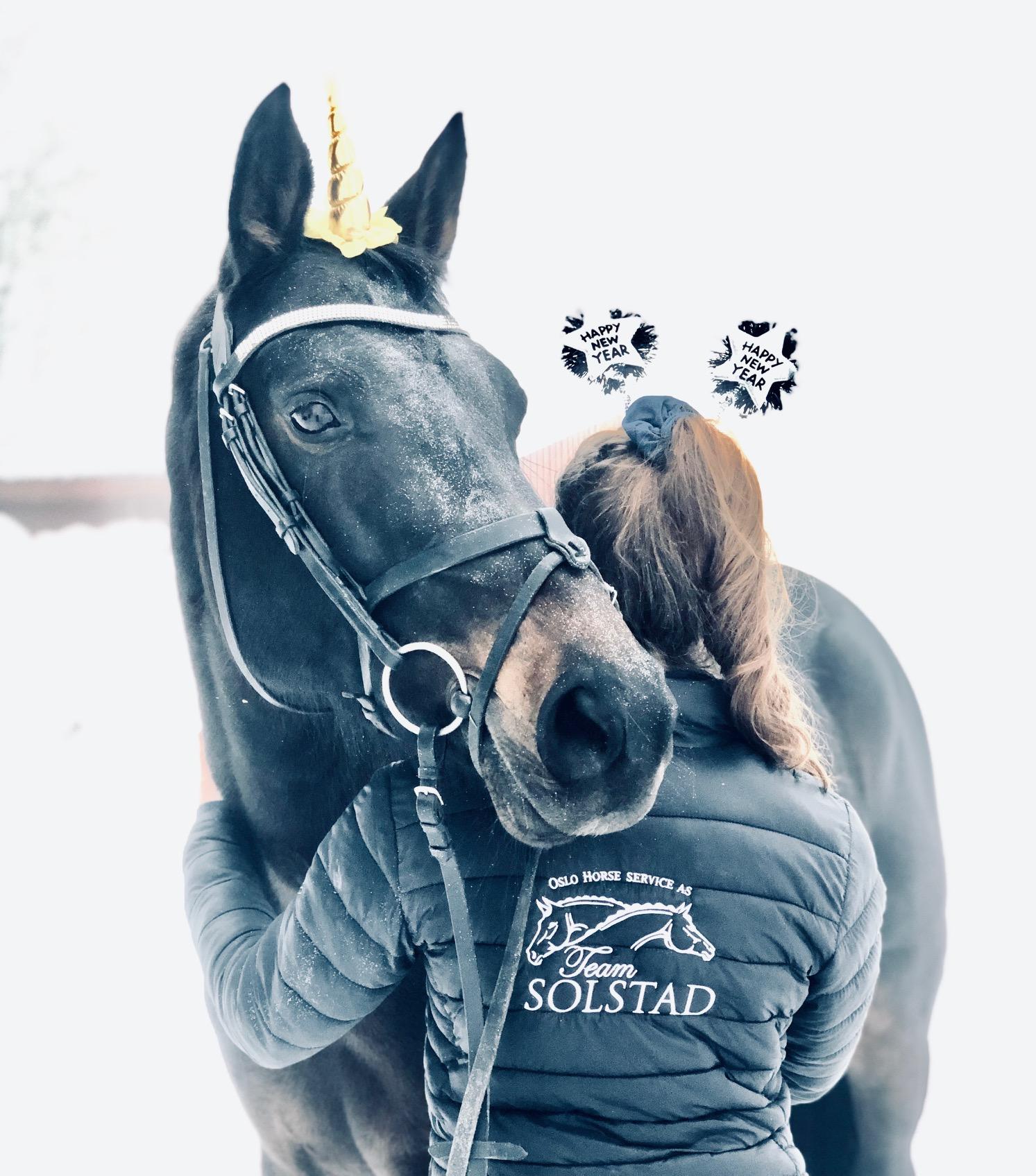 Trygg nyttårsfeiring for din hest