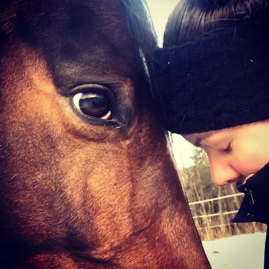 Daisy og meg. Er vi alle en hestehvisker med den 6 sans for dyrene?